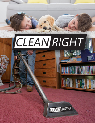 carpet cleaners Chanhassen owner