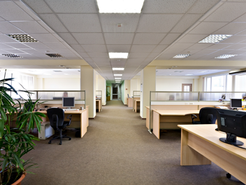 Commercial Carpet Cleaning Eden Prairie kids stains